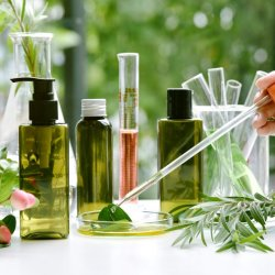 Organikus termék